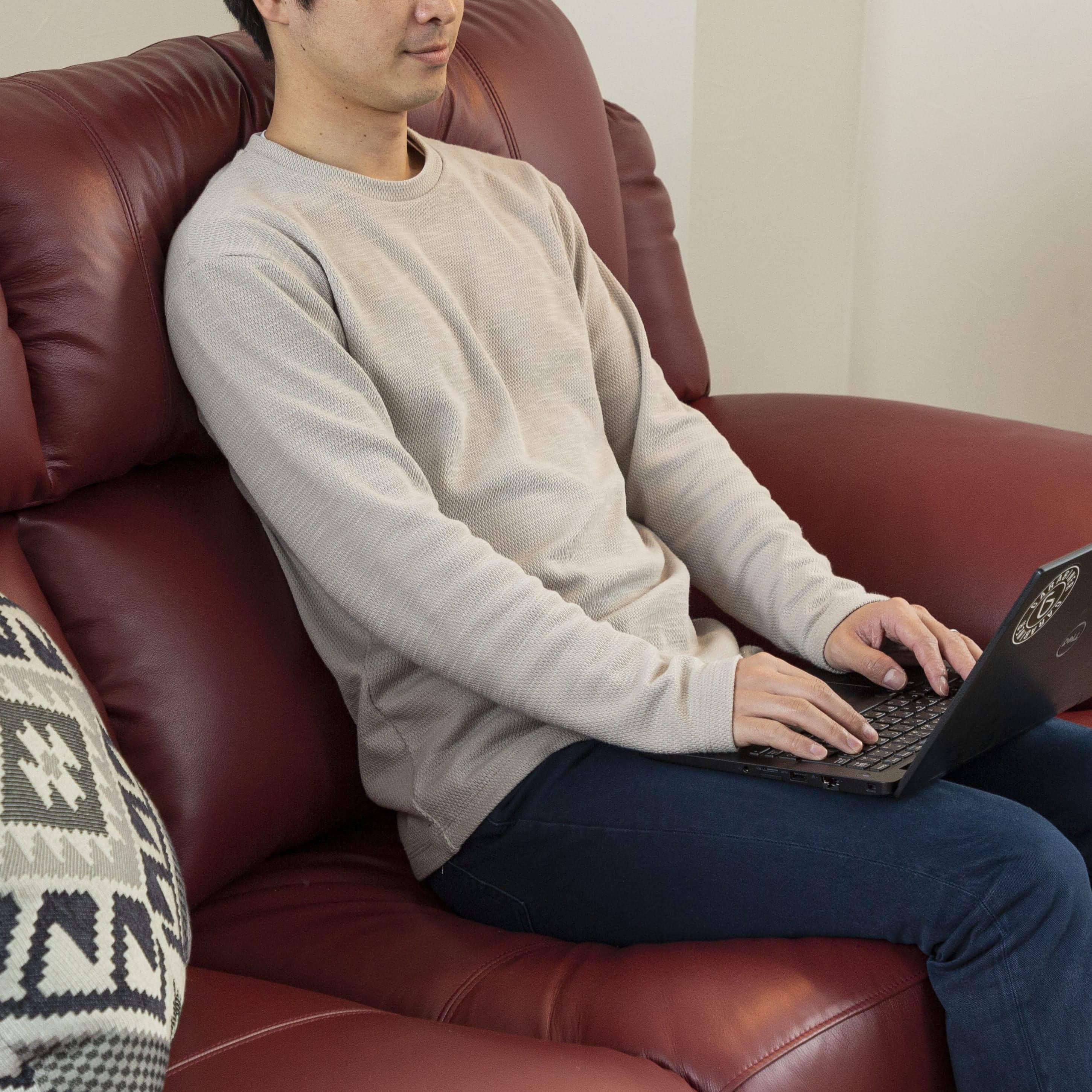 2.5人掛けソファー デビュー068PRM 2.5S SEMIWN:本物の革の質感を贅沢に堪能