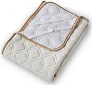 ベッドパッド バジェットメッシュパッド Q2:クイーン2