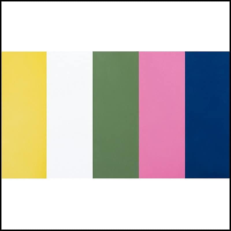 シングルフレーム ルコル(マットレス別売):選べるカラー5色