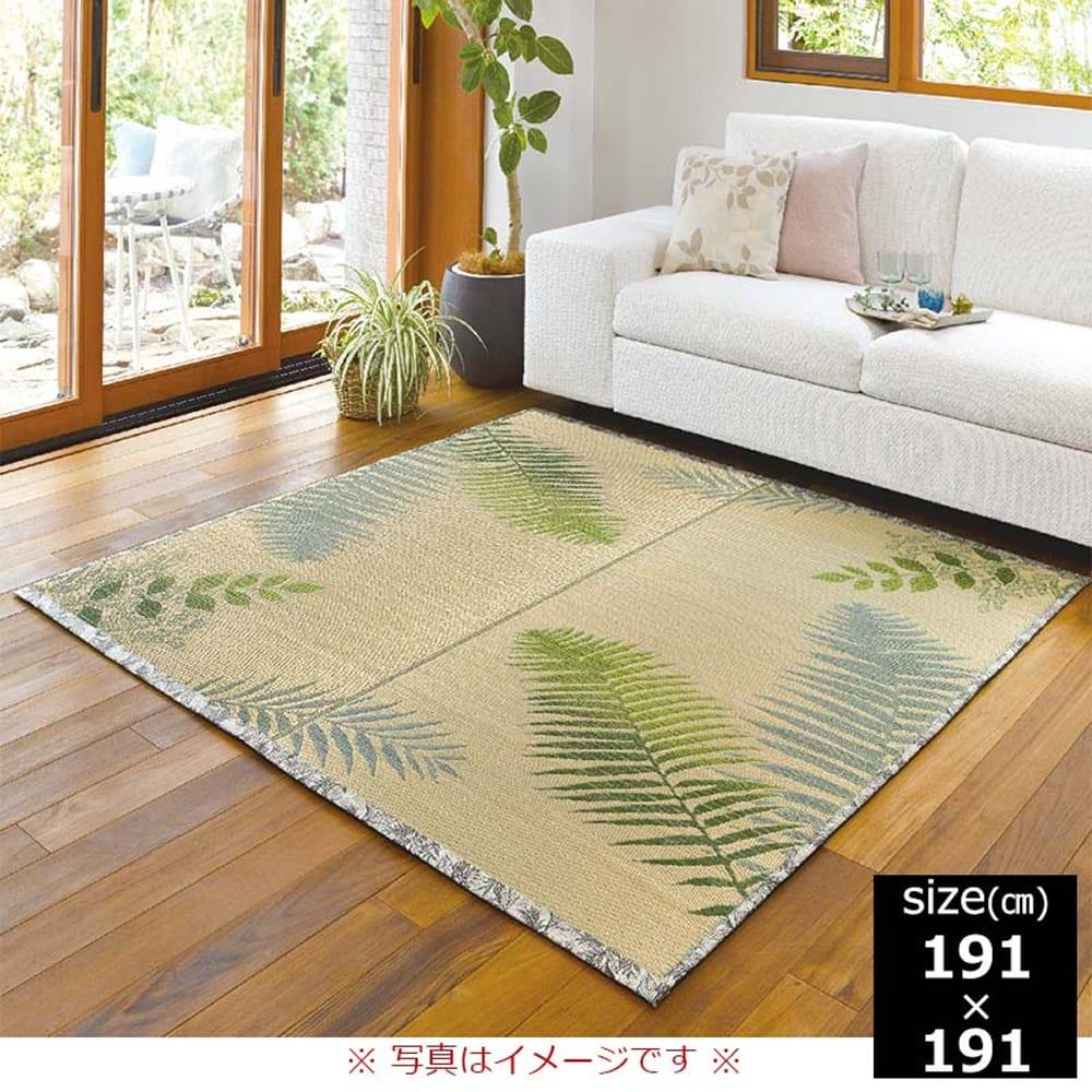 い草 ふっくらラグ ボタニカ 191×191:グラデーションが美しいボタニカルラグ