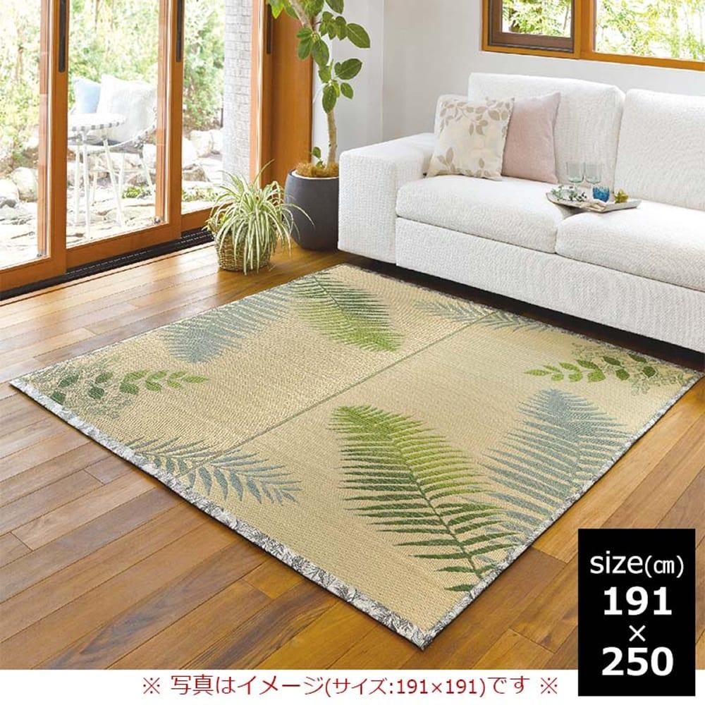 い草 ふっくらラグ ボタニカ 191×250:グラデーションが美しいボタニカルラグ