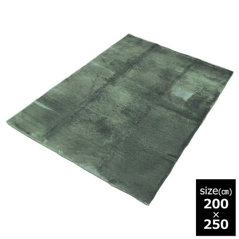 ラグ Fラルジュ 200x250 GN