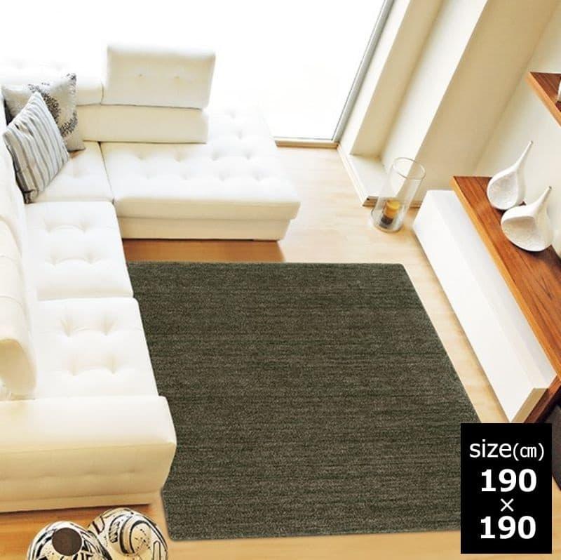 ラグ MC−100 190×190 ダークグリーン 38:「ムシカビクリーン」のカーペット