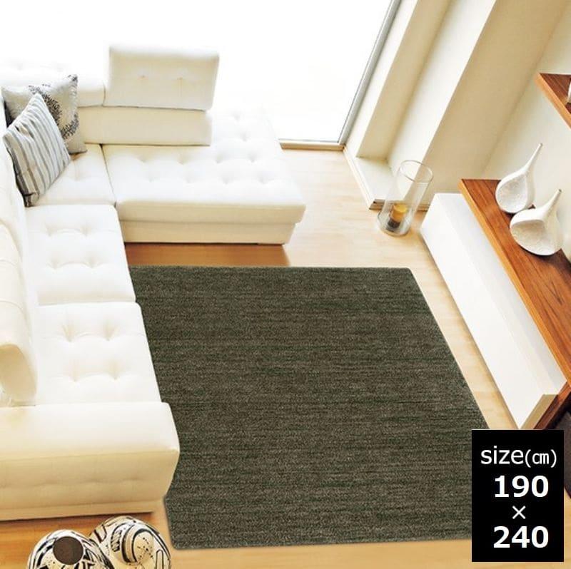 ラグ MC−100 190×240 ダークグリーン 38:「ムシカビクリーン」のカーペット