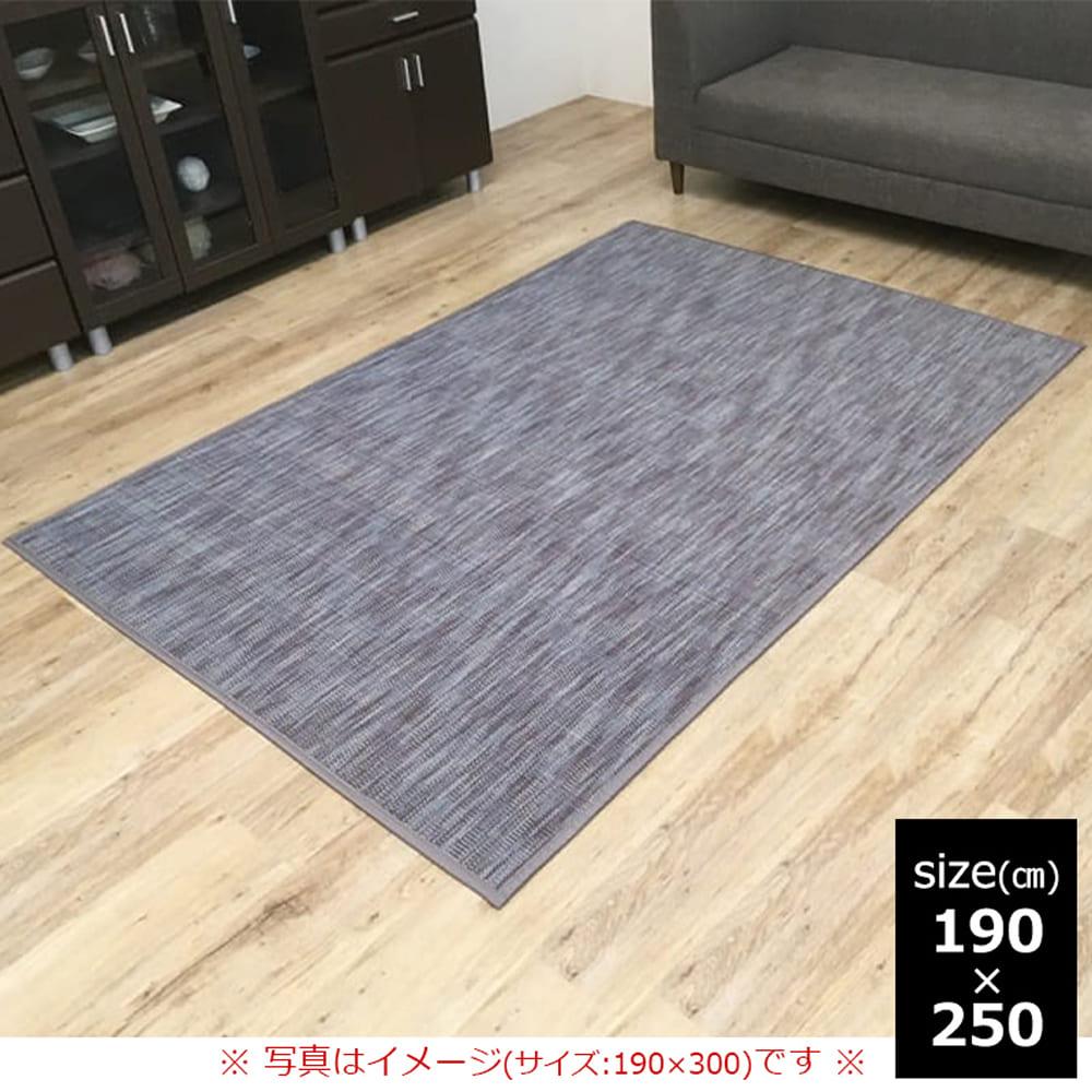 竹ラグ DXフォース 190×250 GY
