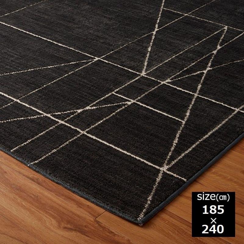 レジェール 185×240 ダークグレー:アース製薬(株)の技術協力により開発された「ムシカビクリーン」のカーペット