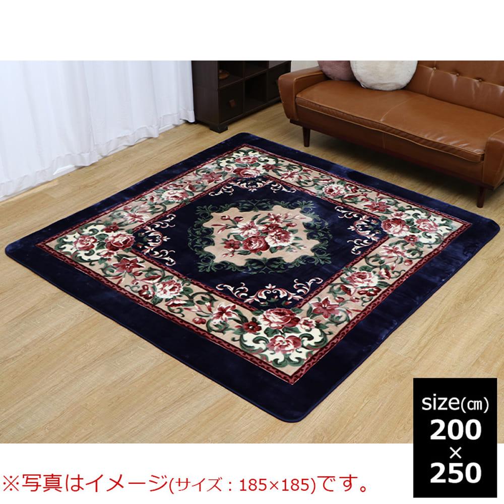 DXアメリア NV 200×250