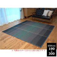 い草 CXクリア 190×300 BL