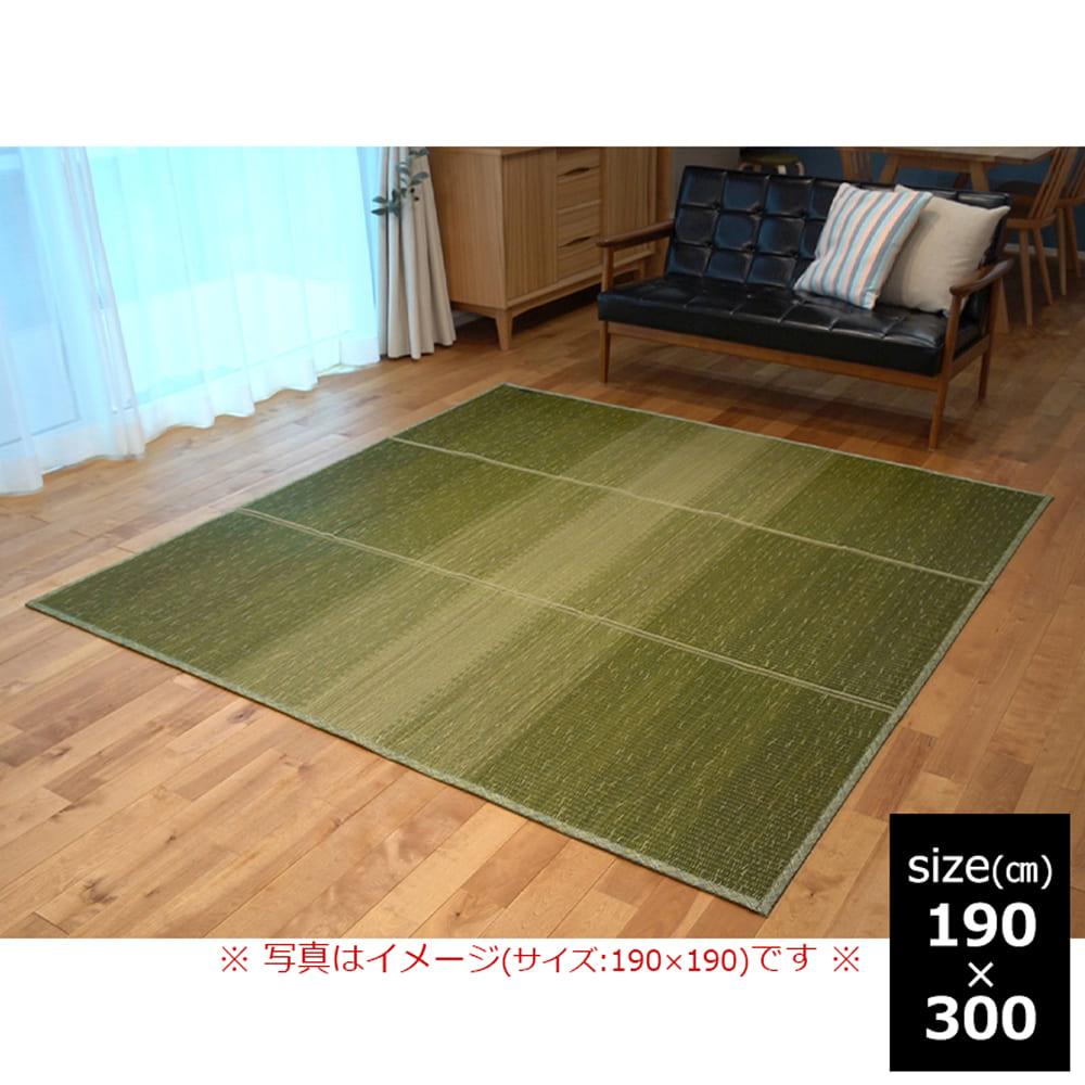 い草 CXクリア 190×300 GN:さらっと快適、い草素材