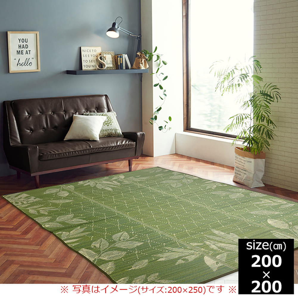 い草ラグ NSPレスター 200×200 GN:さらっと快適、い草素材
