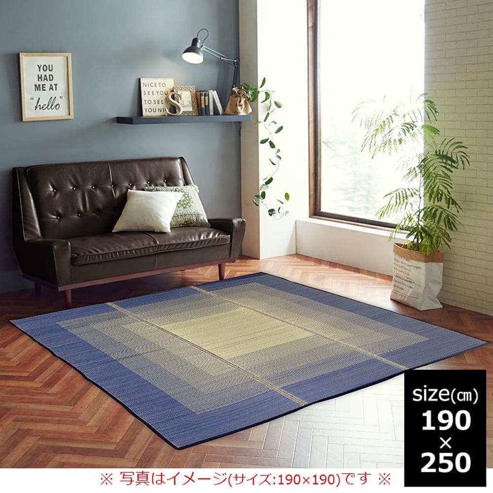 撥水 い草ラグ CXオリジン 190×250 BL:さらっと快適、い草素材