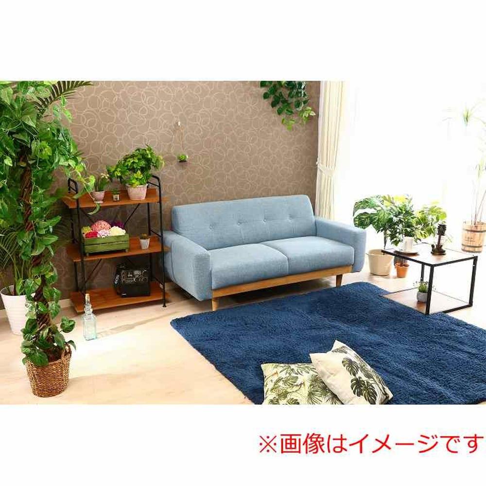 【ファブリック】2.5人掛けソファー ブランチ BL/NA(ブルー・ウッドNA)