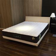 【葛西店 展示特価品】 クィーン1ベッド Ag-BAE-PW-SPL フランスベッド