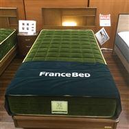 【大和店 展示特価品】 シングルベッド【フランスベッド】 JEロイヤルグリーン/JE-02レッグ